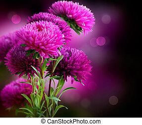 otoño, diseño, aster, flores, arte