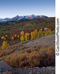 otoño, dividir, dallas