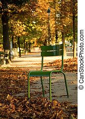 otoño, en, paris., típico, parisiense, parque, silla, en, el, luxemburgo, garden., parís, francia