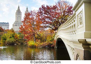 otoño, en, parque central, en la ciudad, de, nueva york, estados unidos de américa