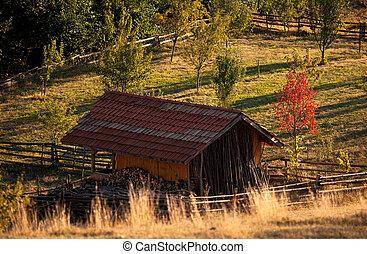 otoño, encima, el, búlgaro, praderas