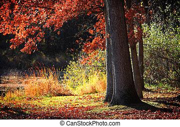 otoño, escena