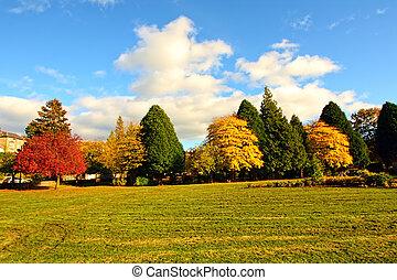 otoño, escocia