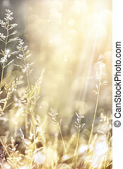 otoño, Extracto, arte, Plano de fondo, naturaleza