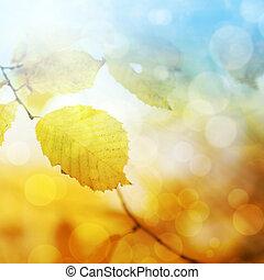 otoño, Extracto, Plano de fondo