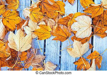 otoño, fondo.