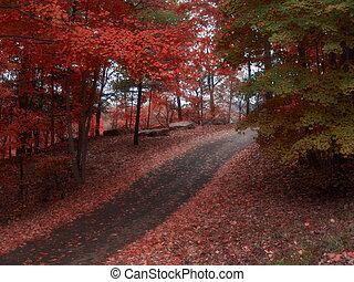 otoño, gloria
