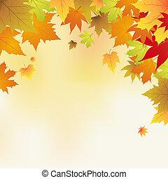 otoño, hojas, Plano de fondo