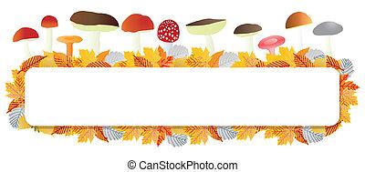 otoño, hongos, hojas, vector, plano de fondo