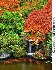 otoño, jardín