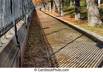 otoño, jogging, manera