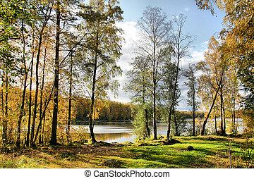 otoño, lago, día