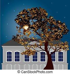 otoño, luz de la luna, noche de moda, la ciudad