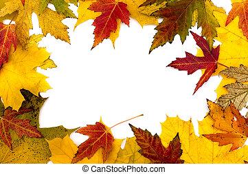 otoño, marco, hojas