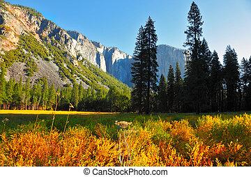 otoño, montañas, valle, temprano