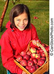 otoño, mujer, manzana