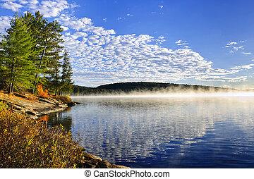 otoño, orilla, lago, niebla