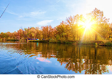 otoño, otoño, leaf., hoja, otoño