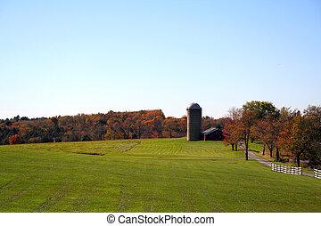 otoño, país, paisaje