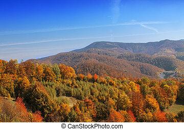 otoño, paisaje, de, el, colina