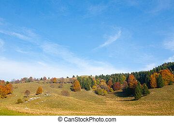 otoño, paisaje de montaña