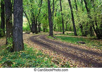 otoño, paisaje, de, norteño, utah