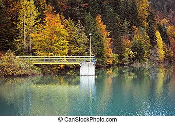 otoño, paisaje, naturaleza, composición