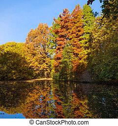 otoño, paisaje., parque