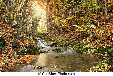 otoño, paisaje.