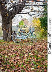 otoño, parque, bicicleta, otoño