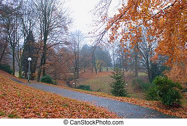 otoño, parque, lluvia, caer sale, y, linternas