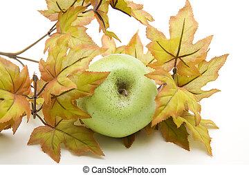 otoño, peras, rama