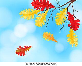otoño, plano de fondo