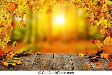 otoño, plano de fondo, con, caer sale, y, vacío, tabla de madera