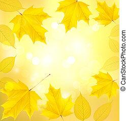 otoño, plano de fondo, con, hojas