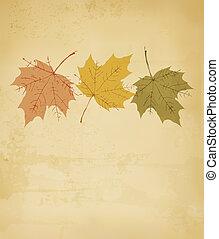 otoño, plano de fondo, con, leaves., vector