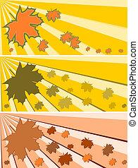 otoño, plano de fondo, con, sol
