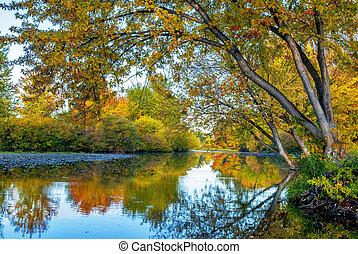 otoño, por, río, idaho, boise