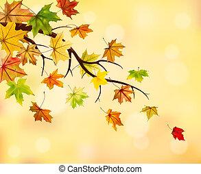 otoño, rama