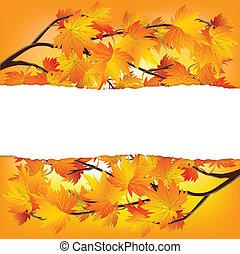 otoño, ramas de árbol