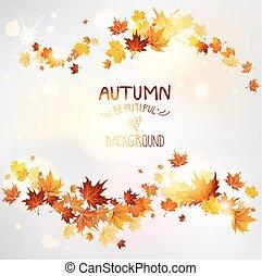 otoño, remolino, de, permisos de arce