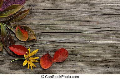 otoño sale, en, madera, plano de fondo