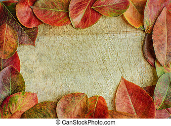 otoño sale, en, un, de madera, backgroun