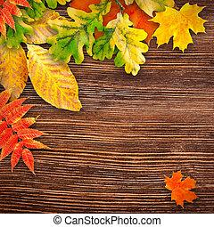 otoño sale, en, un, de madera, plano de fondo