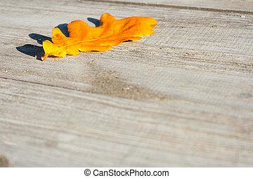 otoño sale, en, un, tabla
