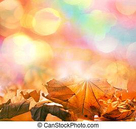 otoño sale