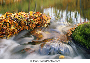otoño sale, y, cascada