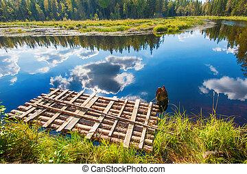 otoño, salmón, lago, paisaje