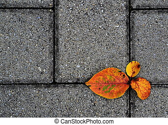 otoño, Senda
