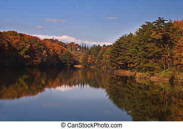 otoño, splendour